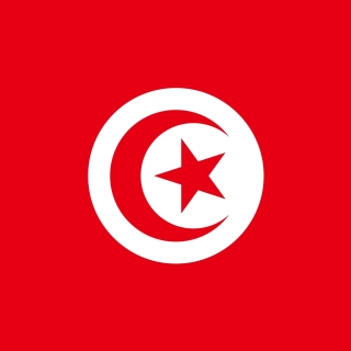 Flag of Tunisia sfondi gratuiti per 1024x1024