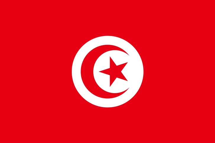 Flag of Tunisia wallpaper