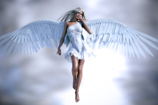 Free Angel 3D Picture for LG Optimus U