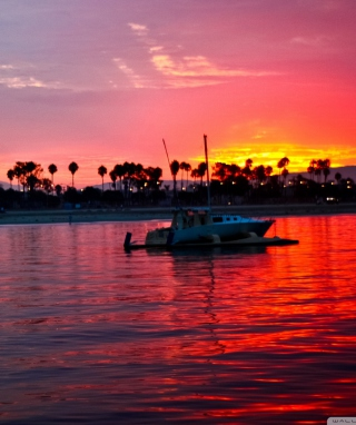 California Sunset Background for 640x1136
