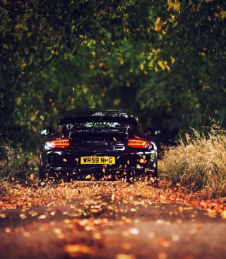 Rainy Autumn Road Drive Wallpaper for Nokia Asha 311