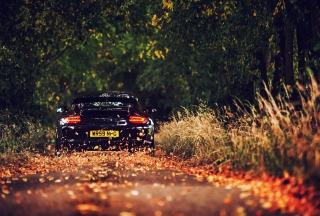 Rainy Autumn Road Drive Background for Nokia Asha 200