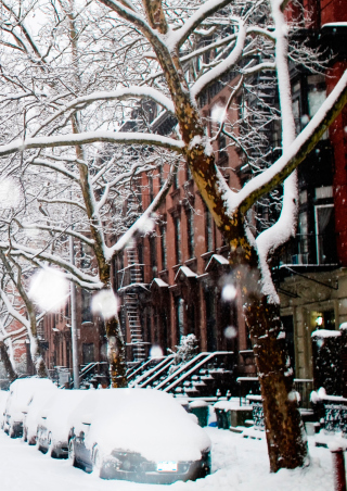 Winter On New York Streets - Fondos de pantalla gratis para Nokia Asha 311