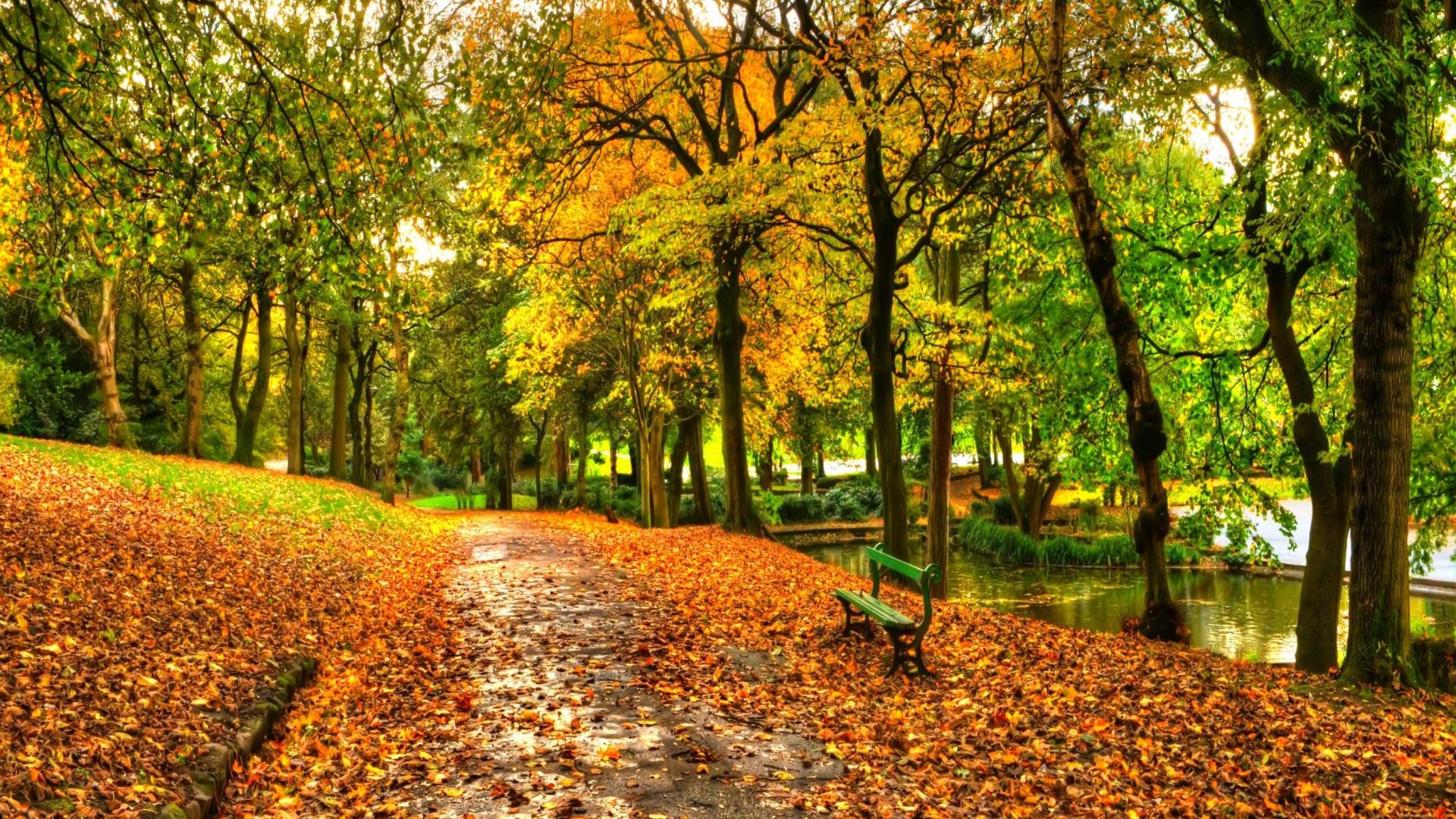 autumn park wallpaper 1920x1080 - photo #4