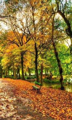 Autumn In New York Central Park para Samsung S5233T