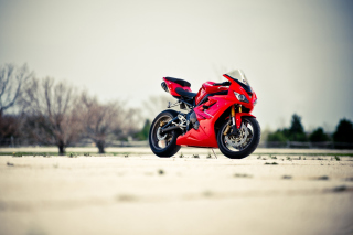 Triumph Daytona 675 Sport Bike Background for Android, iPhone and iPad