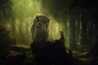 Wise Owl Wallpaper for 1600x1200