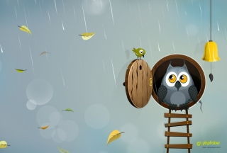 Autumn Owl Picture for Android 480x800
