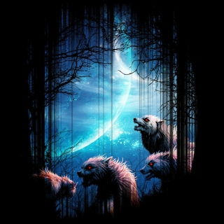Wolverines At Night sfondi gratuiti per iPad 3