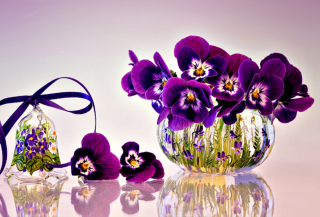 Still Life Background for Sony Xperia M