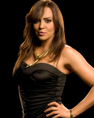 WWE Divas Layla El Background for Nokia Asha 306