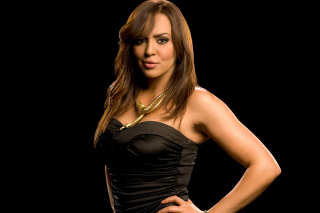 WWE Divas Layla El Background for Android 480x800