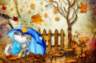 Free Autumn Cat Picture for Android, iPhone and iPad