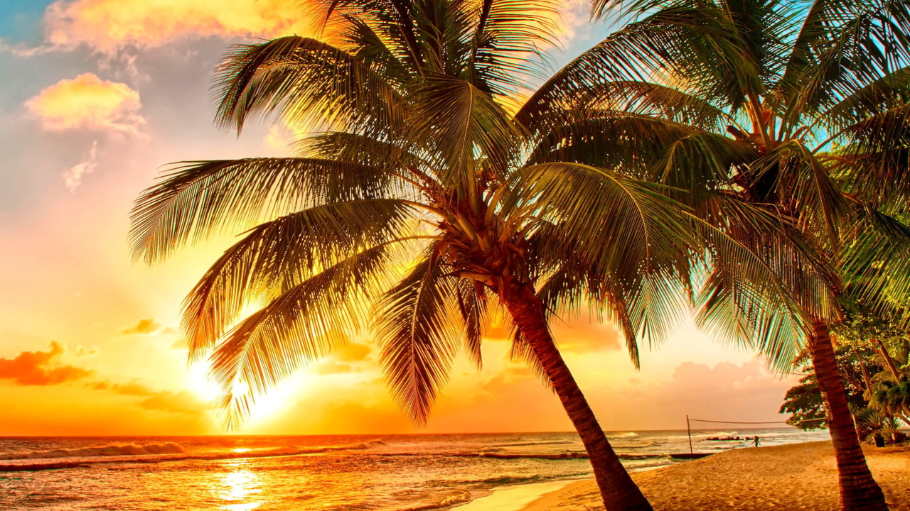 Golden Sunset On Bali, Indonesia