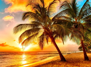Golden Sunset On Bali, Indonesia Background for Android, iPhone and iPad