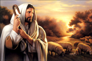 Kostenloses Jesus Good Shepherd Wallpaper für Samsung I9080 Galaxy Grand