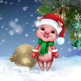 2019 Pig New Year Chinese Astrology sfondi gratuiti per iPad 3