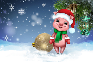 Kostenloses 2019 Pig New Year Chinese Astrology Wallpaper für Android 480x800