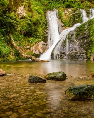 Waterfall in Spain sfondi gratuiti per 320x480