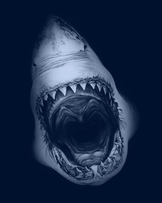 Free Terrifying Mouth of Shark Picture for Nokia C1-01