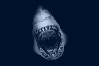 Terrifying Mouth of Shark Background for 220x176