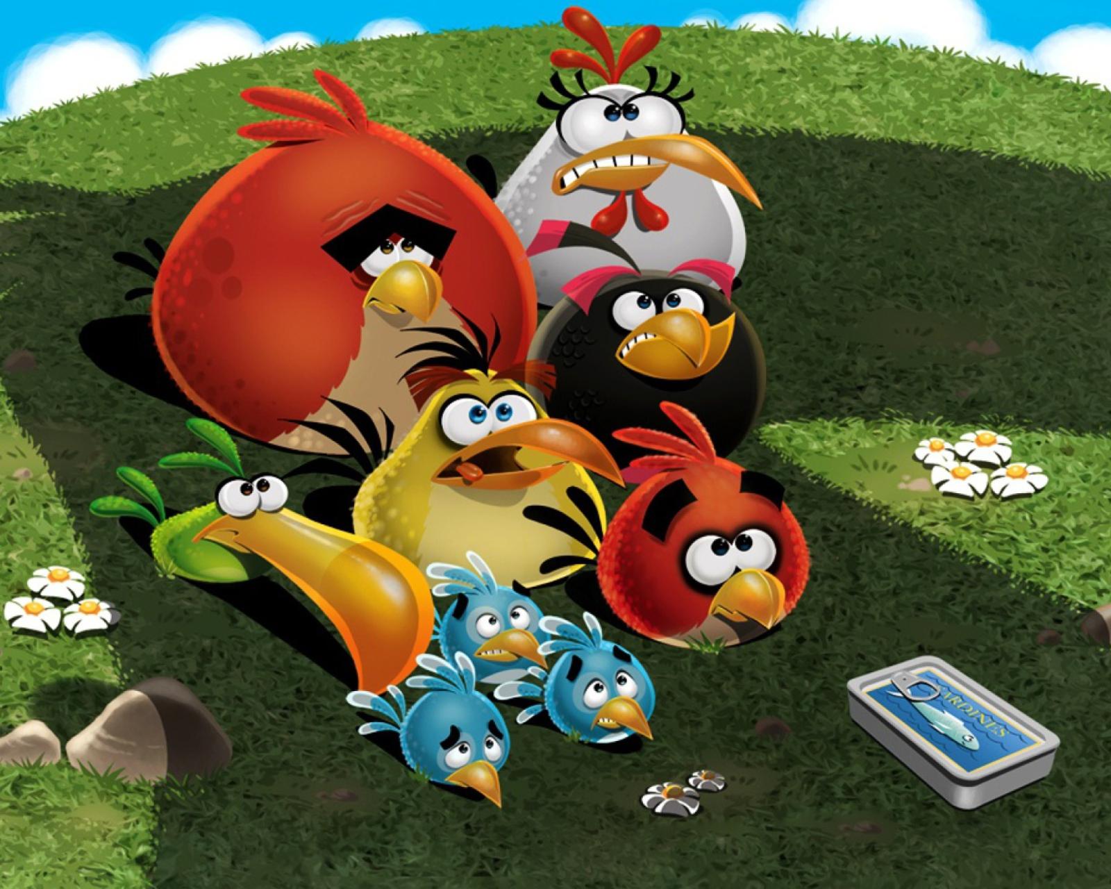картинки игры птицы нашем сайте