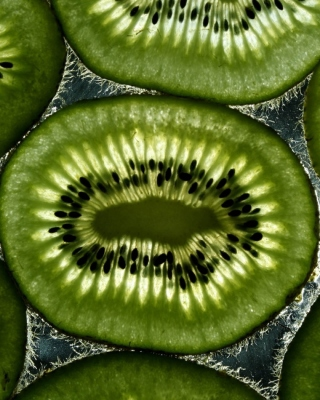 Kiwi Wallpaper for Nokia Lumia 505