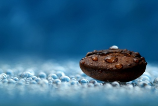 Free Coffee Bean Macro Picture for Android, iPhone and iPad