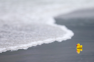 Yellow Rubber Duck At Beach - Obrázkek zdarma