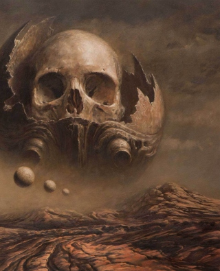 Skull Desert Background for iPhone 6 Plus