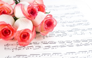 Flowers And Music Picture for Desktop 1280x720 HDTV