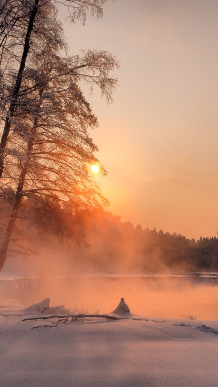 Screenshot №1 pro téma Winter Sun Over River 750x1334