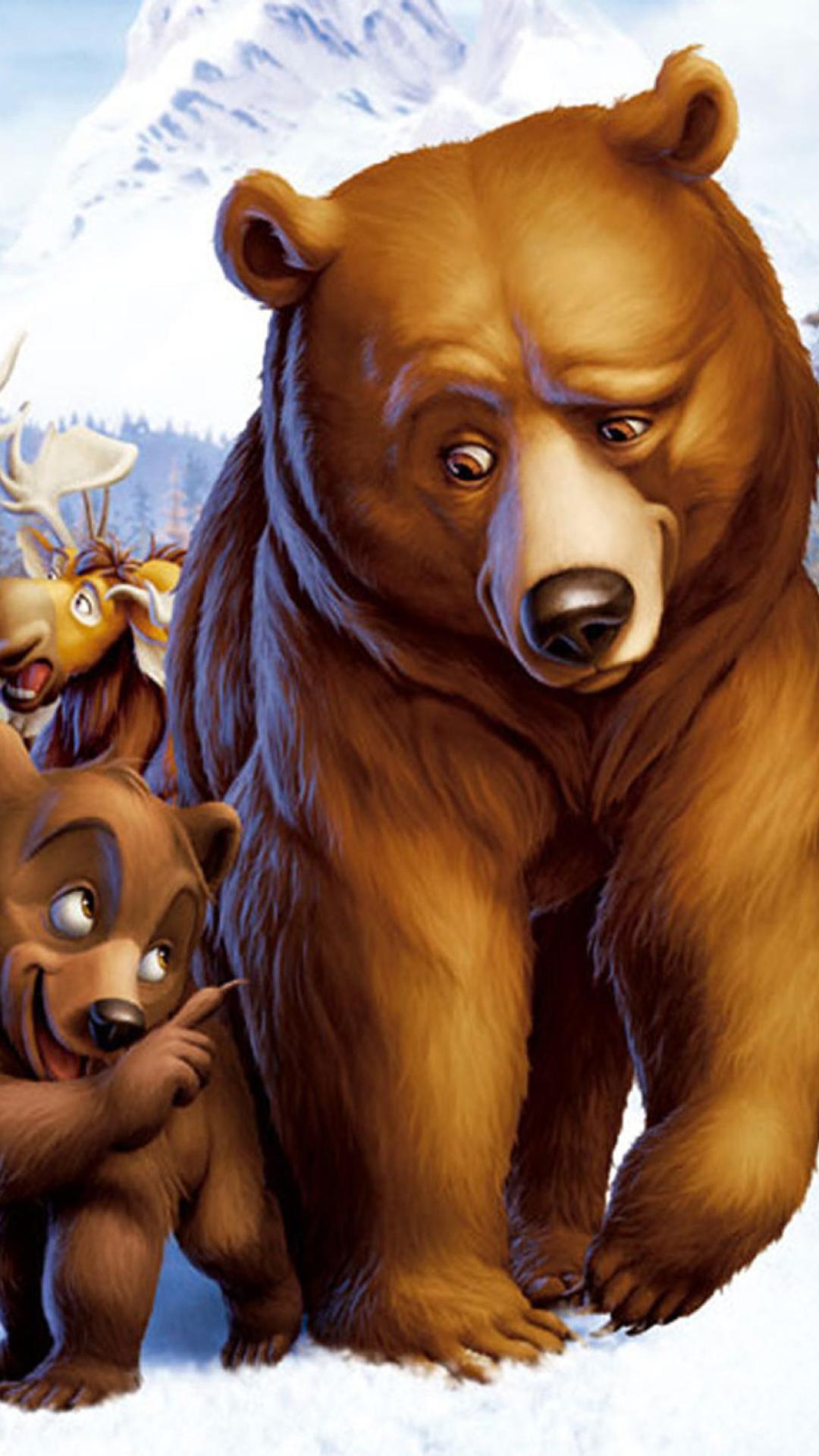 Медведи из мультиков открытки, смешной