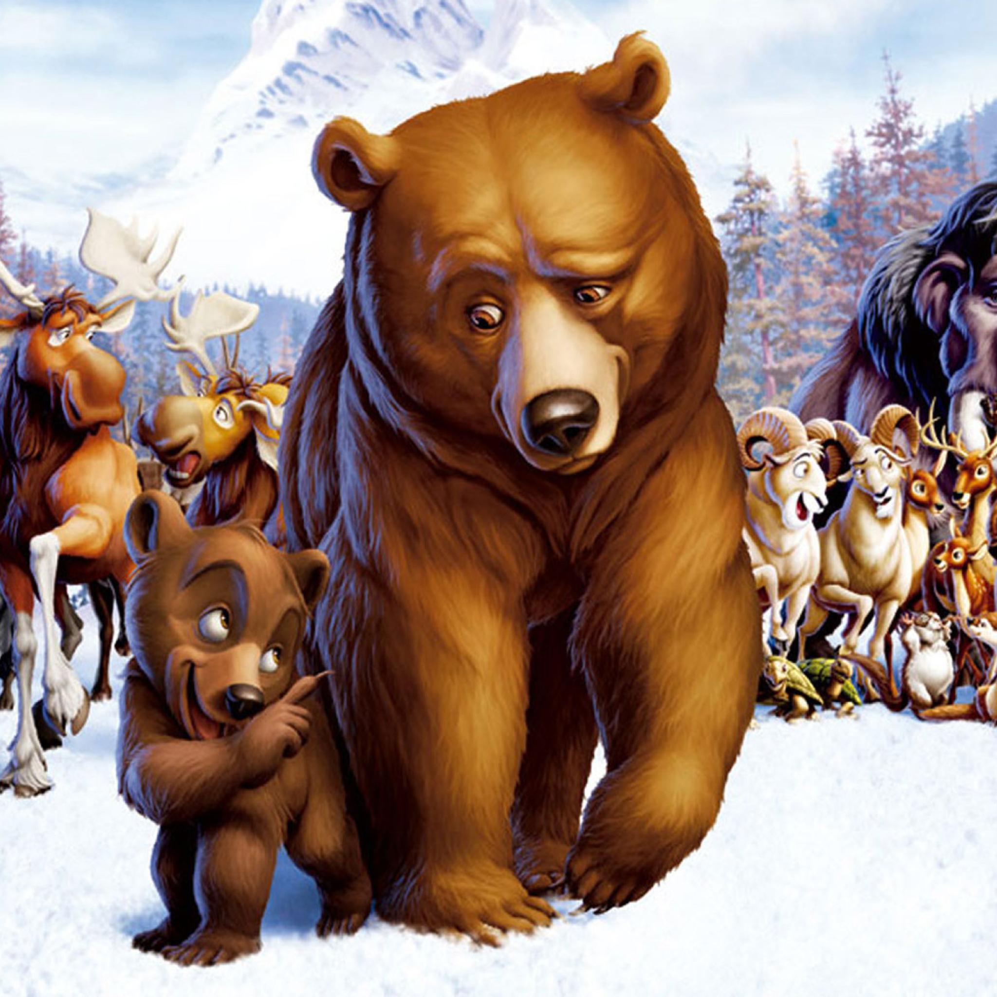 Цветами для, картинки с мультяшными медведями