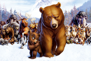 Brother Bear Cartoon - Obrázkek zdarma pro Widescreen Desktop PC 1680x1050