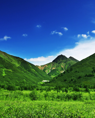 Green Hills Background for HTC Titan