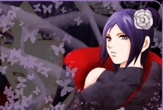 Free Akatsuki Konan Picture for Fullscreen Desktop 1280x1024