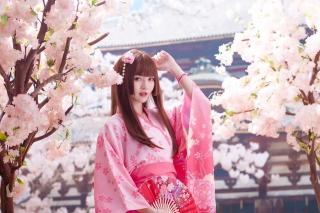 Japanese Girl in Kimono Picture for Android, iPhone and iPad