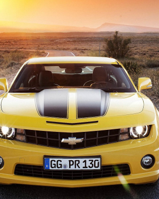 2017 Chevrolet Camaro Wallpaper for Nokia Asha 311