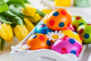 Colorful Polka Dot Easter Eggs Picture for Android, iPhone and iPad