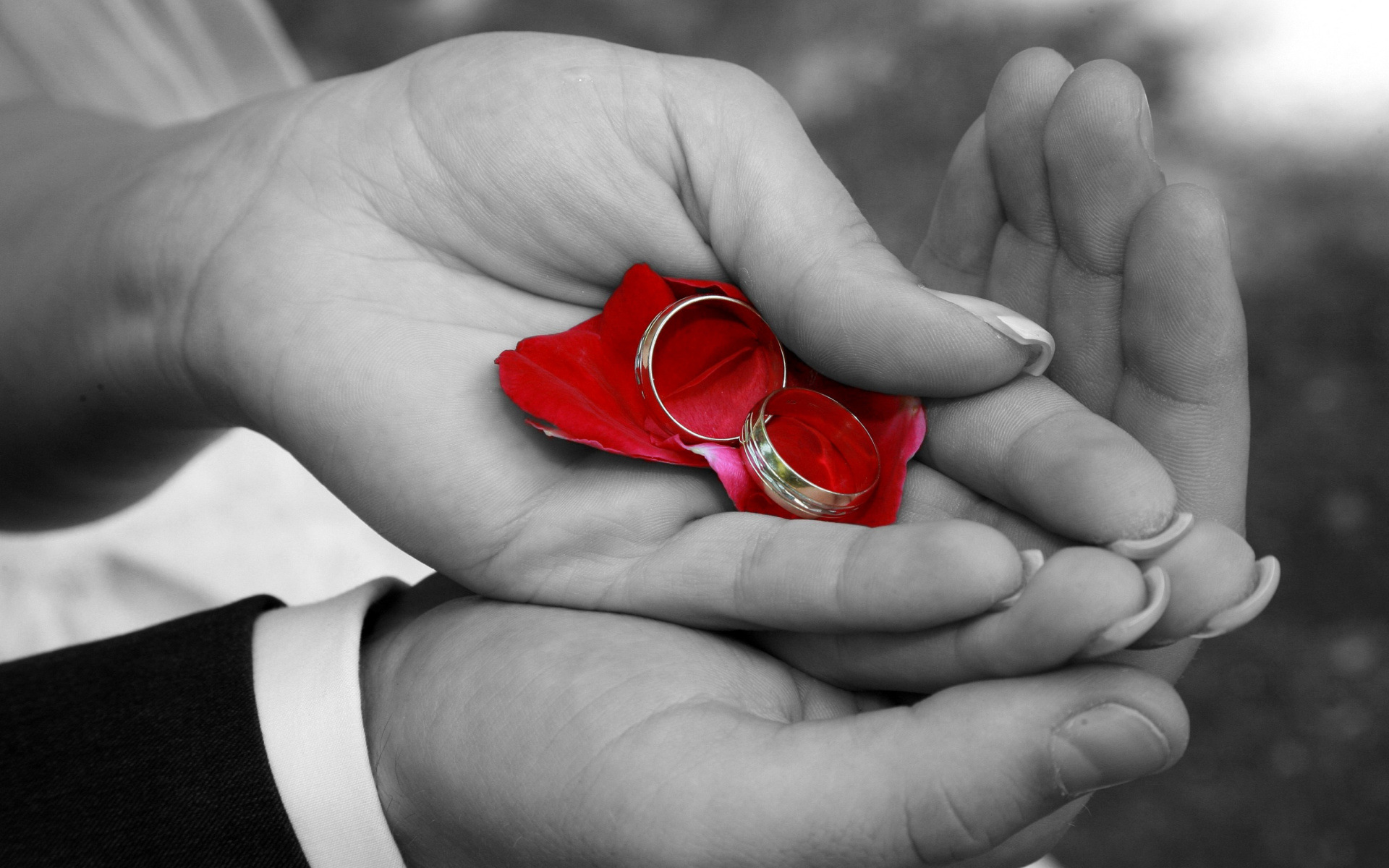 Красивые картинки руки влюбленных с цветами
