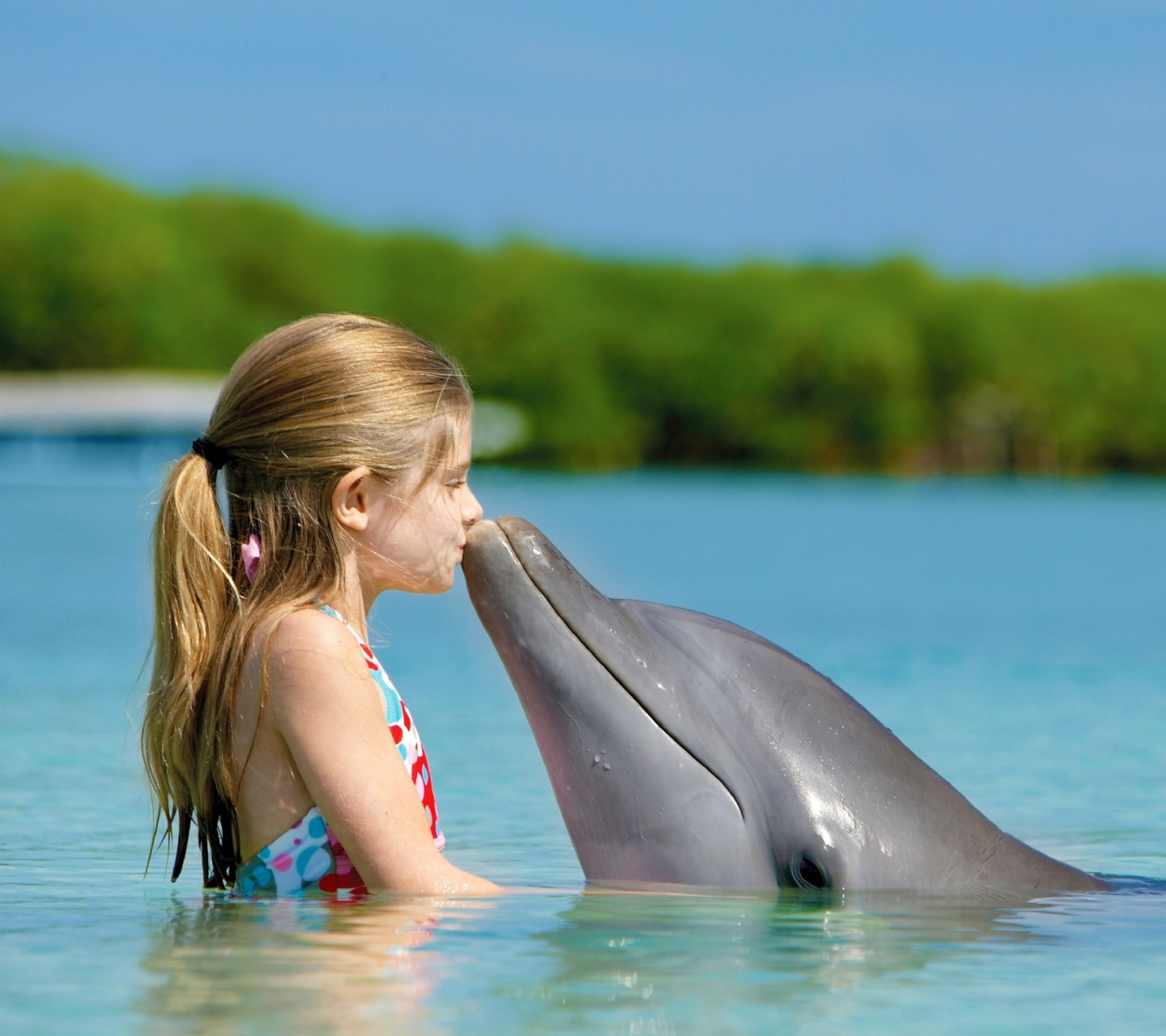Screenshot №1 pro téma Girl and dolphin kiss 1440x1280