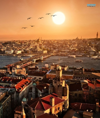 Free Istanbul Turkey Picture for Nokia C1-01