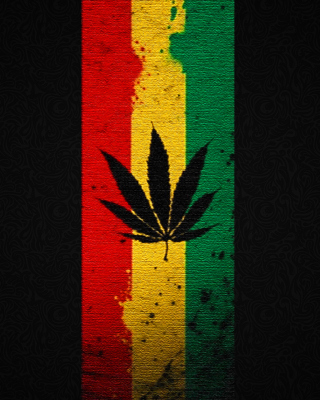 Leaf Rasta Wallpaper for Nokia Asha 305