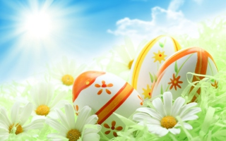 Easter Eggs And Daisies Background for Android, iPhone and iPad