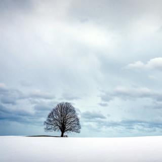 Картинка Austria Winter Landscape для телефона и на рабочий стол iPad mini
