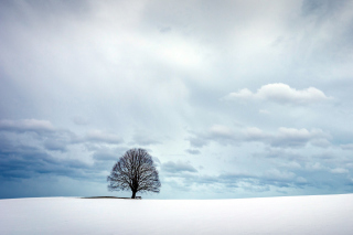 Austria Winter Landscape Wallpaper for Samsung Galaxy Tab 3