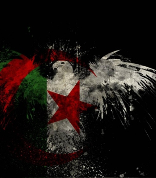 Free Algerian Flag Picture for Nokia C2-05