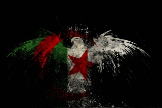 Algerian Flag Background for Android, iPhone and iPad