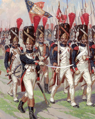 Napoleonic Wars Old Guard Wallpaper for Nokia Asha 311